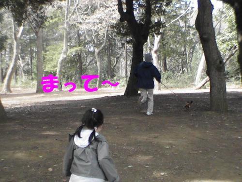 PIC_0875.jpg