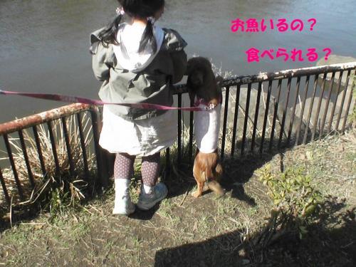 PIC_0900.jpg