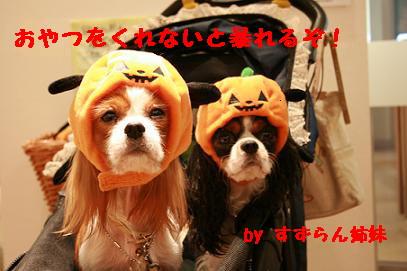 ハロウィン2007 暴れちゃうぞぉ!