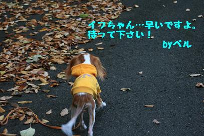 2007/12/04 その2