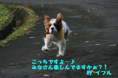 2007/12/04 その1