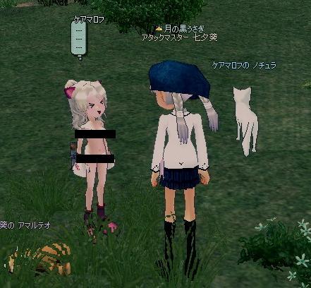 mabinogi_2009_10_16_009.jpg