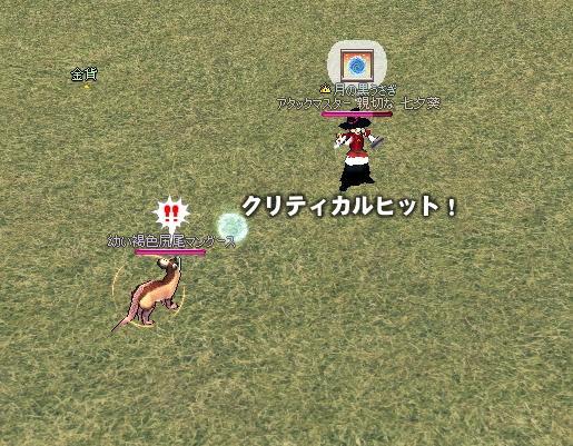 mabinogi_2009_11_04_006.jpg