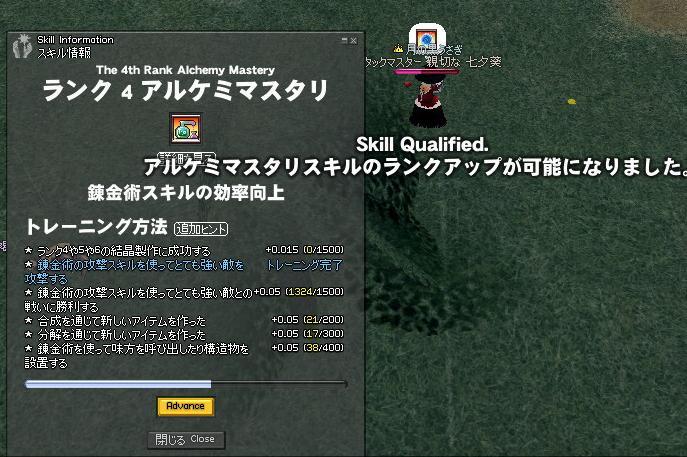 mabinogi_2009_11_04_007.jpg