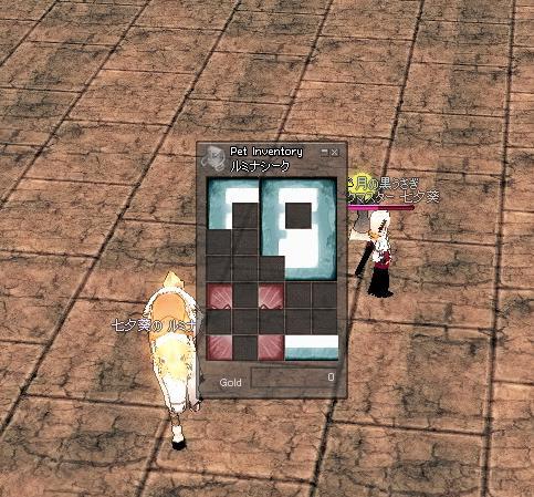 mabinogi_2009_11_07_011.jpg