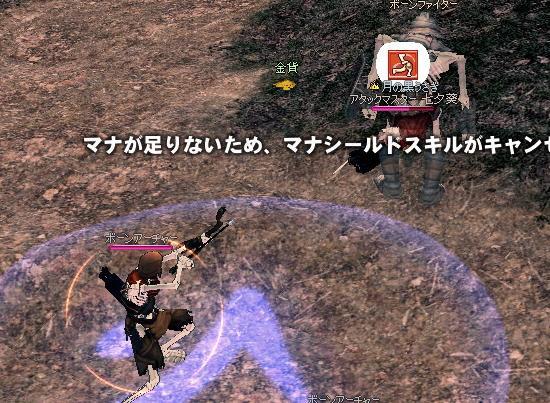 mabinogi_2009_11_10_006.jpg