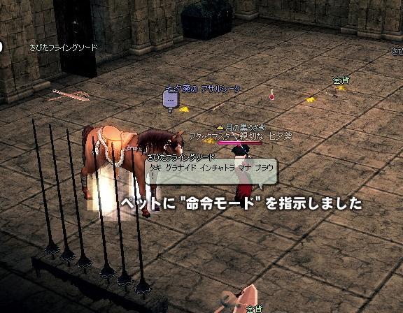 mabinogi_2009_11_11_007.jpg