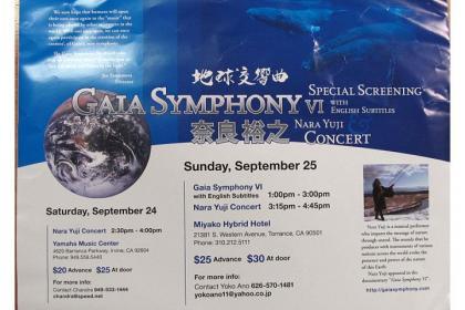 Gia Symphony 6