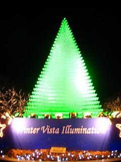 昭和記念公園のクリスマス・イルミネーション1
