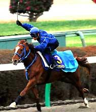 追い切りで好タイムを記録したアドマイヤメイン、柴田善臣騎乗