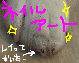hu8.jpg