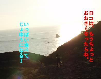 mi2-2.jpg