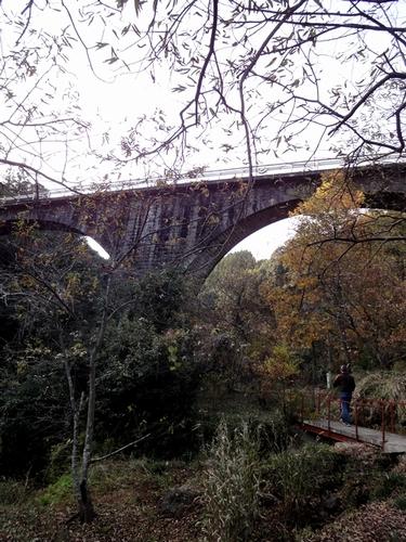 221127 轟橋出合橋2