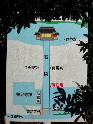 221205 八幡大神社5
