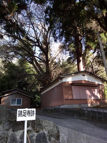 221205 八幡大神社28