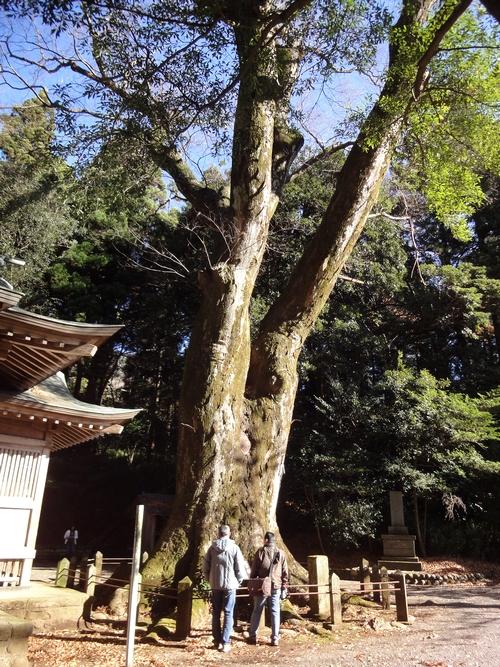 221205 八幡大神社22