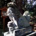 221205 高千穂神社5
