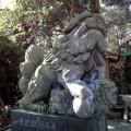 221205 高千穂神社3