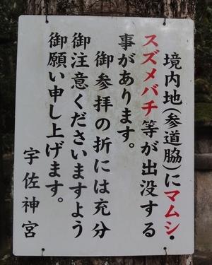 221218 宇佐神宮4
