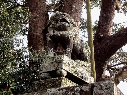 230115 松尾神社3