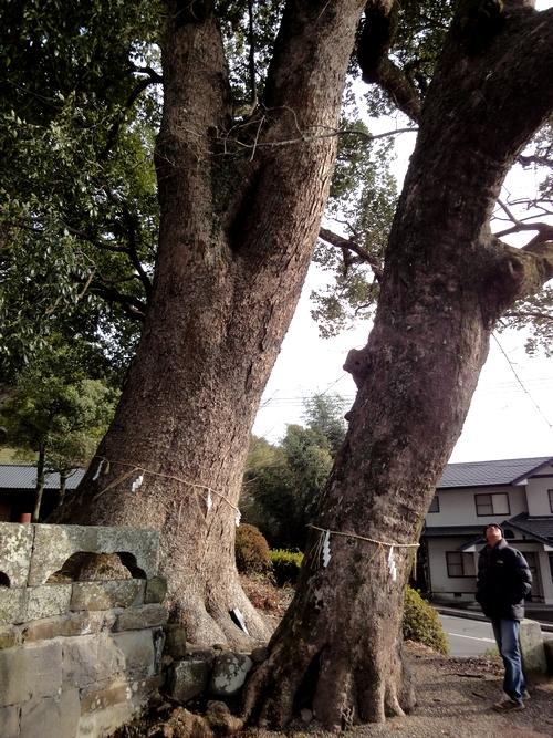 230115 松尾神社7