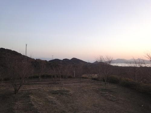 230121 維和桜花公園7