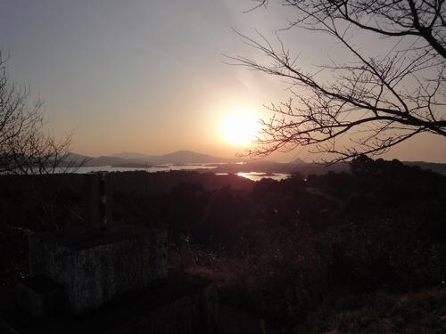 230121 維和桜花公園4