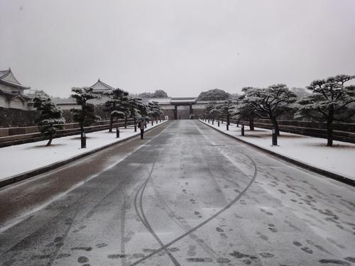 230211 大阪城2
