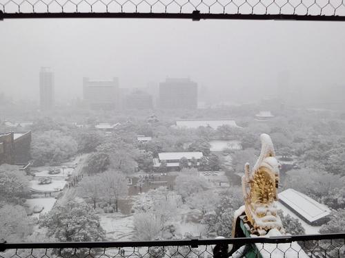 230211 大阪城18