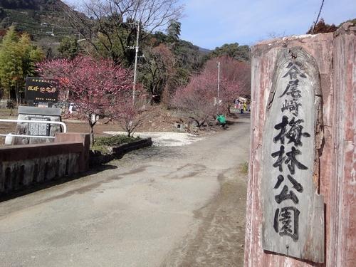 230219 谷尾崎梅林公園1