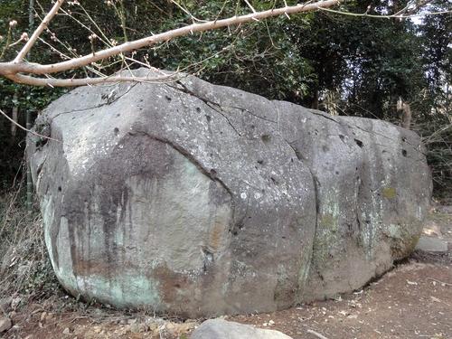 230219 谷尾崎梅林公園12