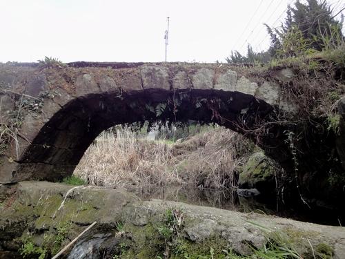 230326 舞鹿野田橋4