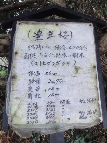 230409 南阿蘇桜巡22