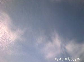 20071114082518.jpg