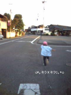 20071114155208.jpg