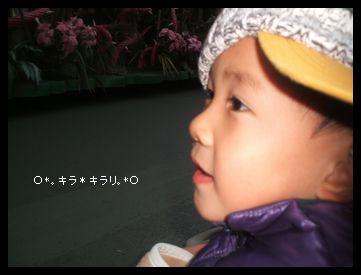 DSCF0059.jpg