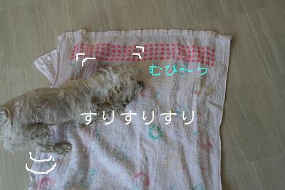 IMG_1607ふろ7むひ