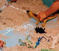 guillemots.jpg