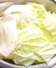 白菜クリームシチュー丼2