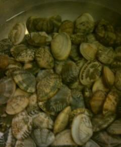 アサリの海苔巻き1