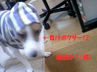 071012_1954~0001.jpg