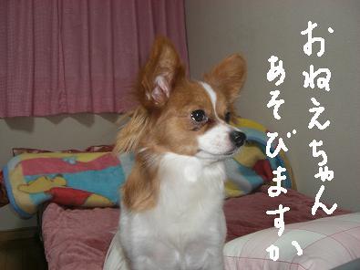 asobu.jpg