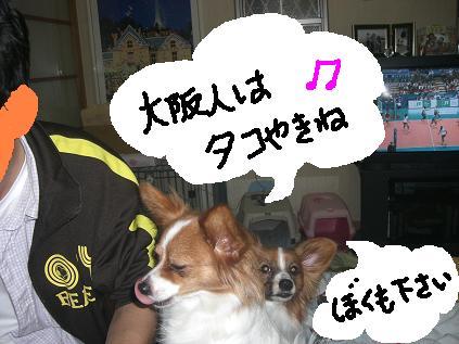 takoyaki6.jpg
