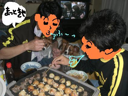 tkoyaki2.jpg