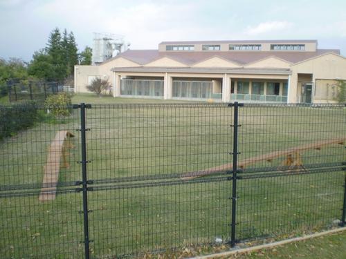 和歌山県動物愛護センター2