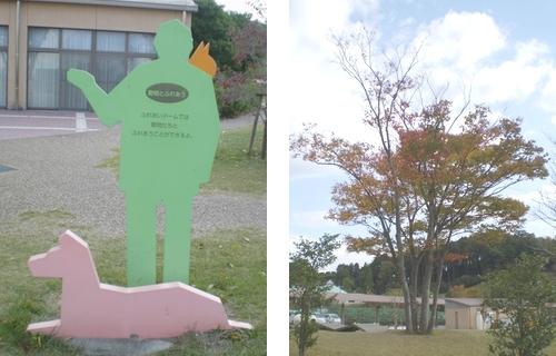 和歌山県動物愛護センター3