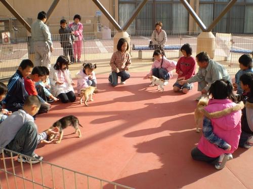 和歌山県動物愛護センター11