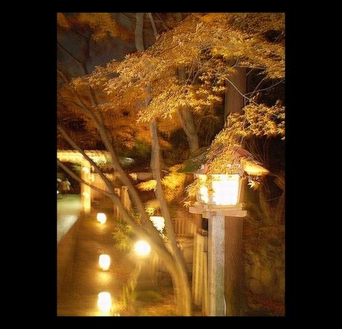 京都嵐山花灯路7