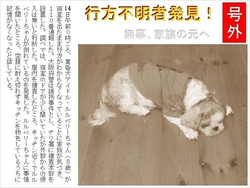 P10_20071014010923.jpg