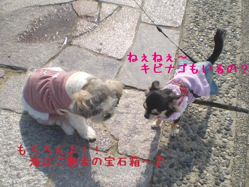 PAB0046.jpg